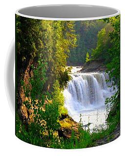 Scenic Falls Coffee Mug