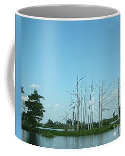 Coffee Mug featuring the photograph Scenic Swamp Cypress Trees by Joseph Baril
