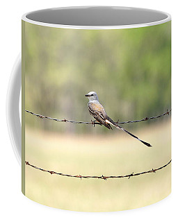 Scissor-tailed Flycatcher Coffee Mug