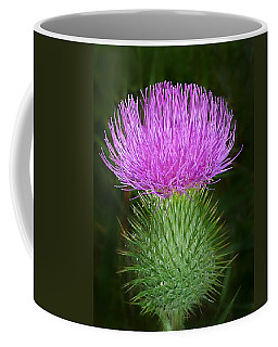 Scottish Thistle  Coffee Mug by William Tanneberger