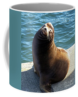Coffee Mug featuring the photograph Sea Lion Basking In The Sun by Chalet Roome-Rigdon