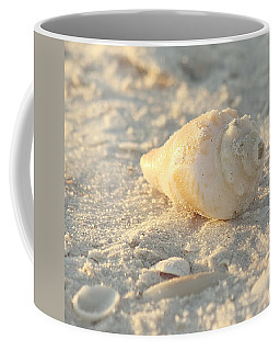 Coffee Mug featuring the photograph Sea Shells by Kim Hojnacki