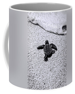 Turtle Coffee Mugs
