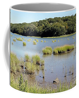 Coffee Mug featuring the photograph Seagrass by Ed Weidman