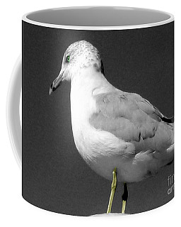 Coffee Mug featuring the photograph Seagull In Black And White by Nina Silver