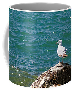 Seagull On Rock Coffee Mug