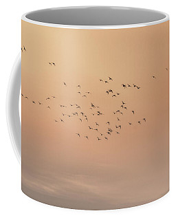 Coffee Mug featuring the photograph Seagulls In The Mist by Beth Sawickie