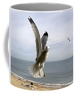 Inquisitive Seagull Coffee Mug by Richard Rosenshein