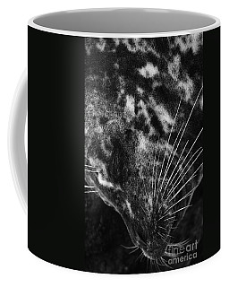 Seal Solitude Coffee Mug