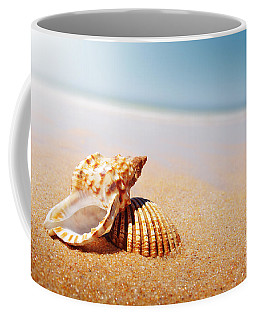 Seashell And Conch Coffee Mug by Carlos Caetano