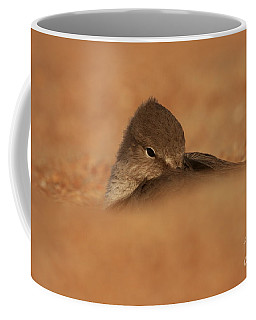 Coffee Mug featuring the photograph Seashell Solitude by John F Tsumas