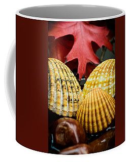 Seashells II Coffee Mug by Marco Oliveira