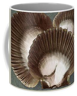 Seashells Spectacular No 22 Coffee Mug