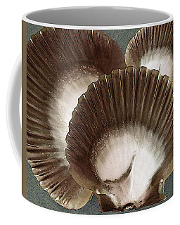 Seashells Spectacular No 22 Coffee Mug