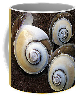 Seashells Spectacular No 23 Coffee Mug