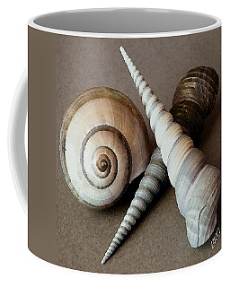 Seashells Spectacular No 24 Coffee Mug by Ben and Raisa Gertsberg