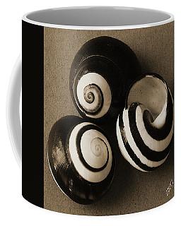Seashells Spectacular No 27 Coffee Mug