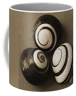 Seashells Spectacular No 28 Coffee Mug by Ben and Raisa Gertsberg