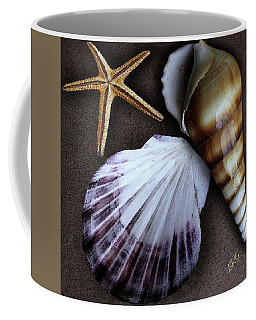 Seashells Spectacular No 37 Coffee Mug