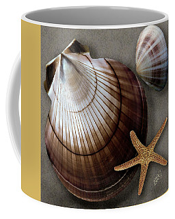 Seashells Spectacular No 38 Coffee Mug