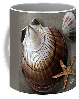 Seashells Spectacular No 38 Coffee Mug by Ben and Raisa Gertsberg