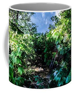 Secret Path Coffee Mug