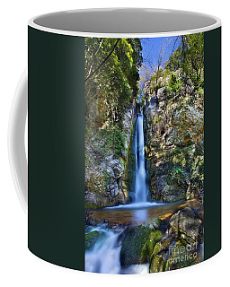 Secret Waterfall Coffee Mug