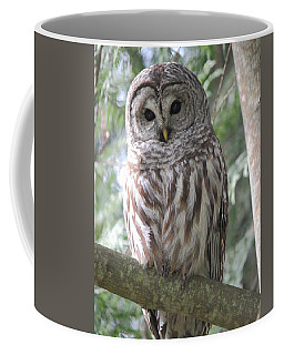 Security Cam Coffee Mug by Randy Hall