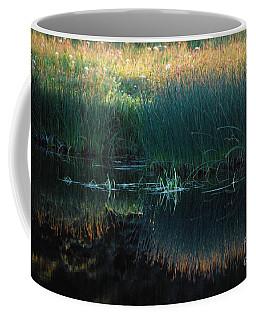 Sedges At Sunset Coffee Mug