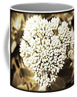Sedum In The Heart Coffee Mug by Kimberlee Baxter