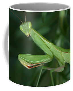 Coffee Mug featuring the photograph Seeing Green by Shane Bechler