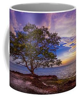Seeing Is Believing Coffee Mug