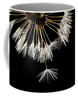 Coffee Mug featuring the photograph Seeking Freedom by Mary Jo Allen