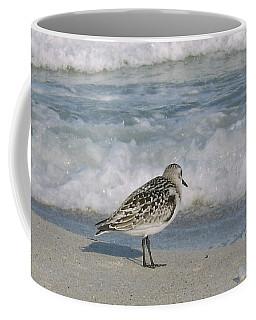 Semiplated Sandpiper Coffee Mug