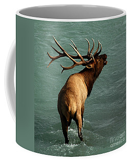 Coffee Mug featuring the photograph Sending A Challenge by Vivian Christopher