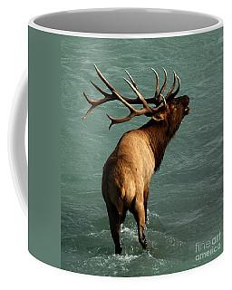 Sending A Challenge Coffee Mug