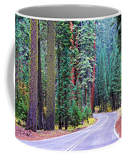 Coffee Mug featuring the photograph Sequoia Hwy by Beth Sargent