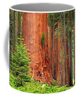 Sequoias Coffee Mug