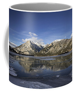 Serenity's Shrine Coffee Mug