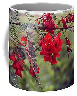 Sesbania Punicea Coffee Mug by Kim Pate