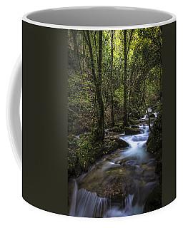 Sesin Stream Near Caaveiro Coffee Mug