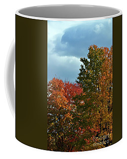 Coffee Mug featuring the photograph Shaded by Judy Wolinsky