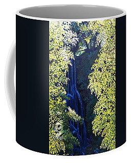 Shadow Sun And  Water Coffee Mug