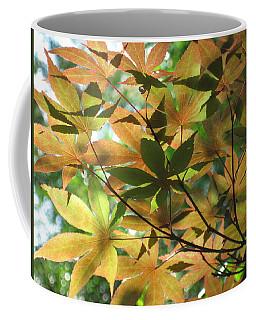 Shadows Of Maple  Coffee Mug