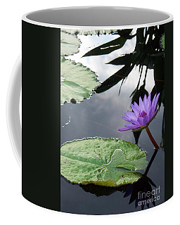 Shadows On A Lily Pond Coffee Mug