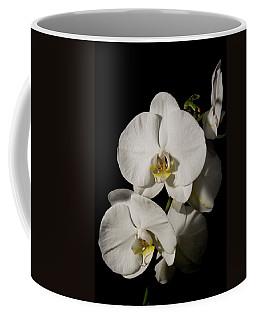Shadowy Orchids Coffee Mug