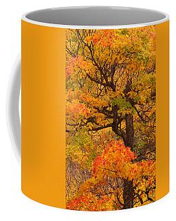 Shapely Maple Tree Coffee Mug