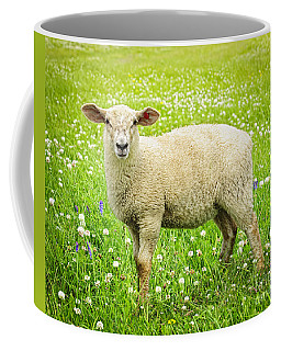 Sheep In Summer Meadow Coffee Mug