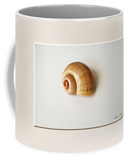 Shell. Delicate Colors Coffee Mug