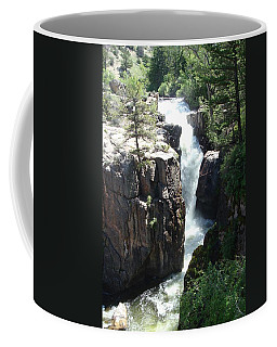 Shell Falls Coffee Mug